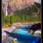 Glacial shades of blue and turquoise stream: one of the offspring of Takakkaw Falls