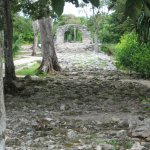 Photo of San Gervasio Mayan Archaeological Site