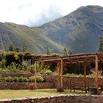 Tierra Viva Valle Sagrado Urubamba Foto