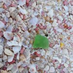 pink sand & a piece of sea glass @Warwick Long Bay