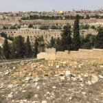Mount of Olives Jewish Cemetery (8)