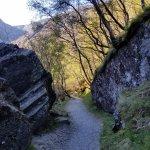 More path shots...
