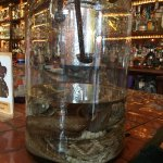 $4 tequila shots from the jar with a dead rattlesnake in it!