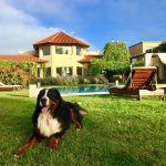 Photo of Villa Mansa Wine Hotel & Spa