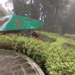 Photo de Kalimpong Park Hotel
