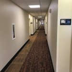Photo de Hampton Inn Carbondale