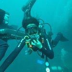 The dive at 10 meters