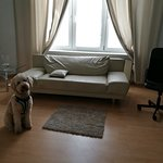 Great hotel, very friendly host, wonderful place to stay when travel with a dog