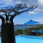 Baobab avec piscine à débordement au Grand Bleu
