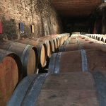 The cellar of a vineyard we visited