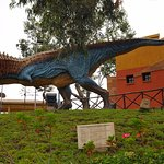 In the park there is introduction about several kind of dinosaur