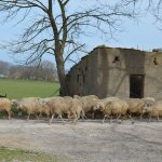 Photo of Agriturismo Sant'Egle