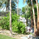 Photo of JA Jebel Ali Beach Hotel