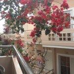 Photo of Hotel Apelia