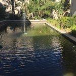 Photo de Oubaai Hotel Golf & Spa