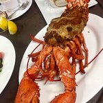 3# stuffed lobster