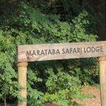 Photo of Marataba Safari Lodge
