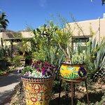 Photo of Hacienda Del Sol Guest Ranch Resort