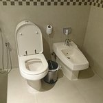 Toilet & Bidet at the Bathroom