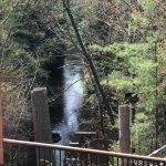 Chula Vista Resort grounds