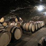 Burgundy Discovery Foto