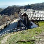 Agritor Ed Pinareul Arios di Società Agricola Alta Val Lamina s.s.