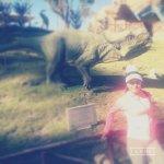 Photo of Dinosaur Tracks (Cal Orck'o)