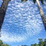Фотография Misty Mountains Tropical Rainforest Retreat