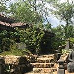 Nosara Pilates at the Bodhi Tree