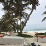 Photo de The Beach Tulum