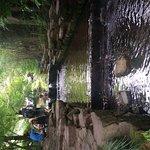 Photo of Jiuxi 18 Stream