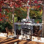 Autumn colors from the grape arbor shading the outdoor dining area.