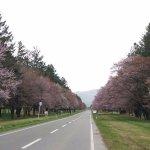 Nijukken Road Foto