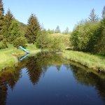 Ferienparadies Wiesenbauer Foto