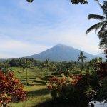 Photo of Ijen Resort & Villas