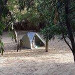 Photo de Camping Internazionale Nettuno