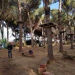 Photo of Parco Avventura Riva dei Tarquini