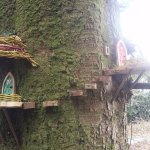 Slieve Gullion Forest Park - Living Children's Storybook