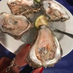 Oysters ... yum!