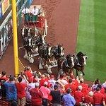 Foto de Busch Stadium