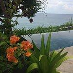 Foto de Mia Resort Nha Trang