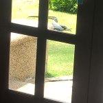 Foto de Nirwana Gardens - Banyu Biru Villa