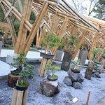El Museo de Bonsái fue construído con una hermosa estructura de bambú