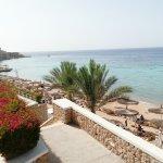 Photo of Reef Oasis Beach Resort