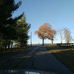 On the road to Keeneland on a fall day