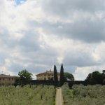 Foto di Tuscan Wine School in Florence