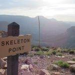 skelton point