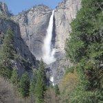 Foto di Yosemite Valley Lodge