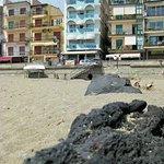 Photo of Hotel Tysandros