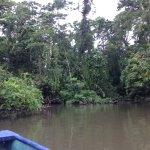 Foto de Parque Nacional Tortuguero